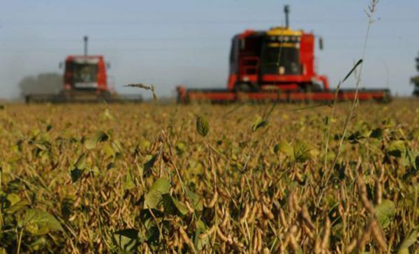 EUA, Brasil e Paraguai são os três principais exportadores de soja mundiais - Foto: Divulgação / El País