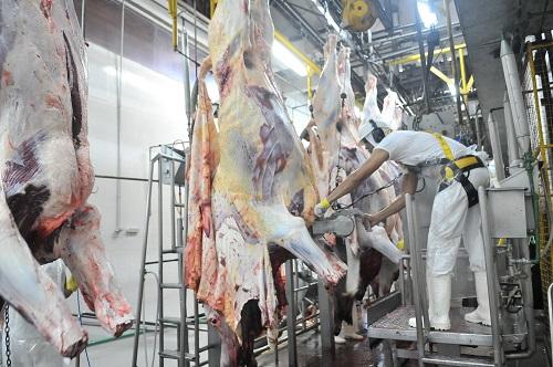 Frigoríficos operam com 30% da capacidade, mas esperam reação nas vendas - Foto: Valdenir Rezende / Correio do Estado