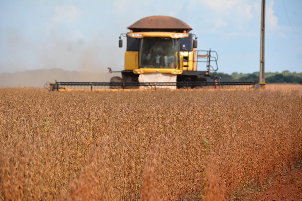 Plantio de soja deve aumentar de 2,67 milhões de hectares para 2,81 milhões em 2019 - Foto: Arquivo/Correio do Estado