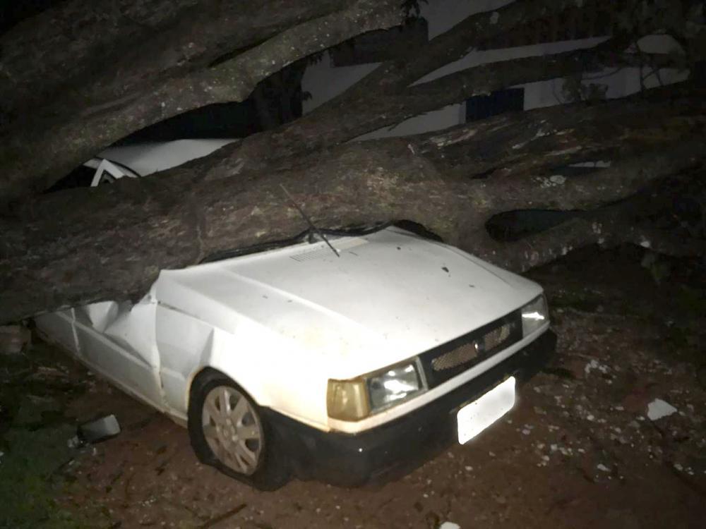 Carro foi atingido por um árvore próximo a rodoviária - Foto: Reprodução/BV News