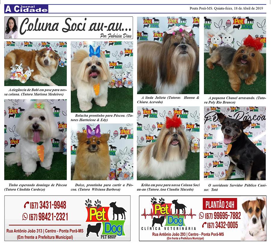 Coluna Social dos cachorrinhos
