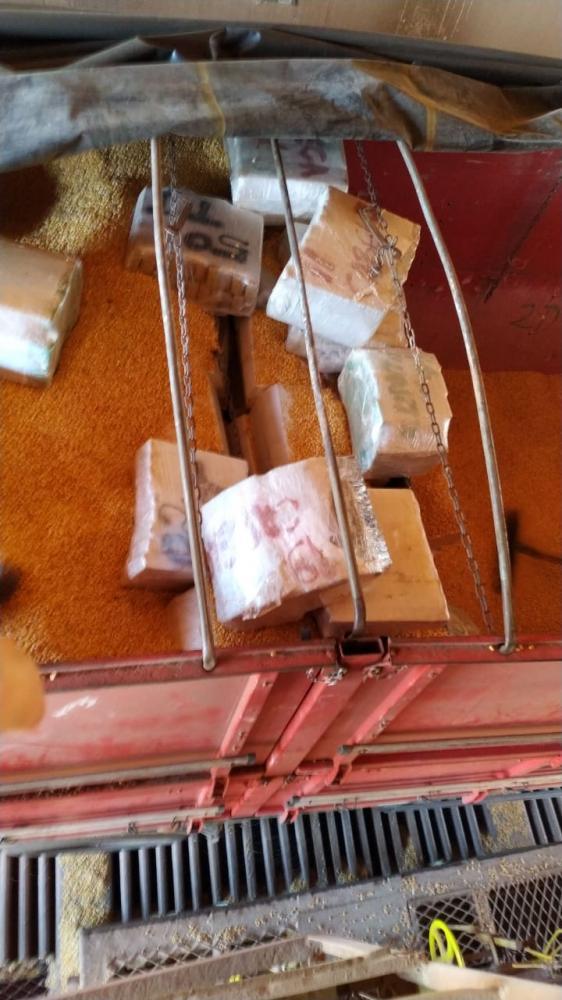 Carga estava escondida em carregamento de milho - Foto: Reprodução/PF