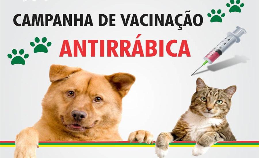Campanha de vacinação antirábica será dia 14 próximo